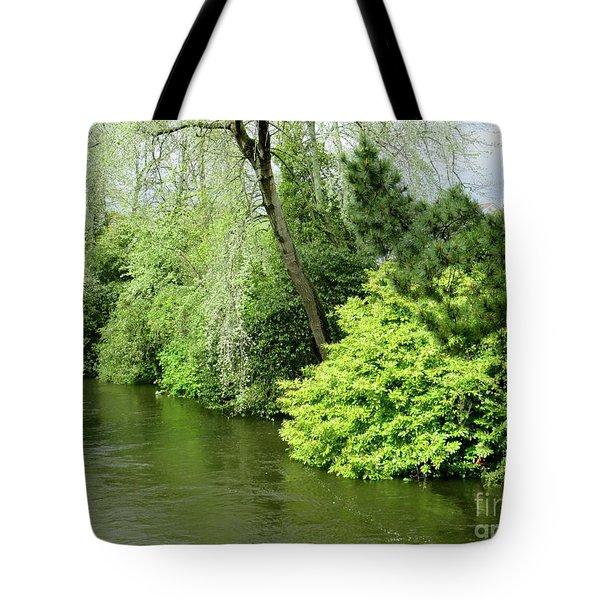 Irish River 2 Tote Bag