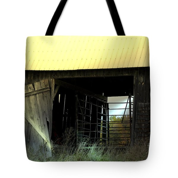 Iron Gate Tote Bag
