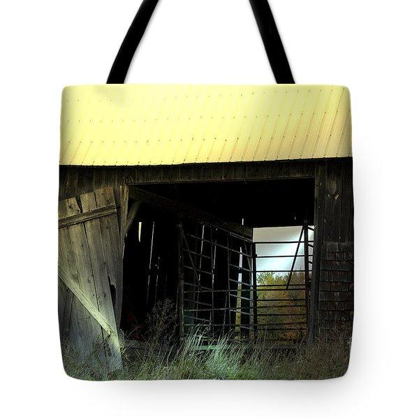 Iron Gate Tote Bag by Elaine Hunter