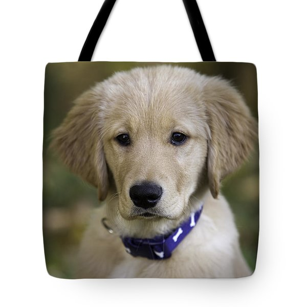 Irresistible Tote Bag
