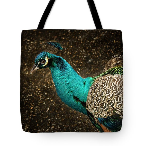 Tote Bag featuring the photograph Is She Looking ? by Jean Noren