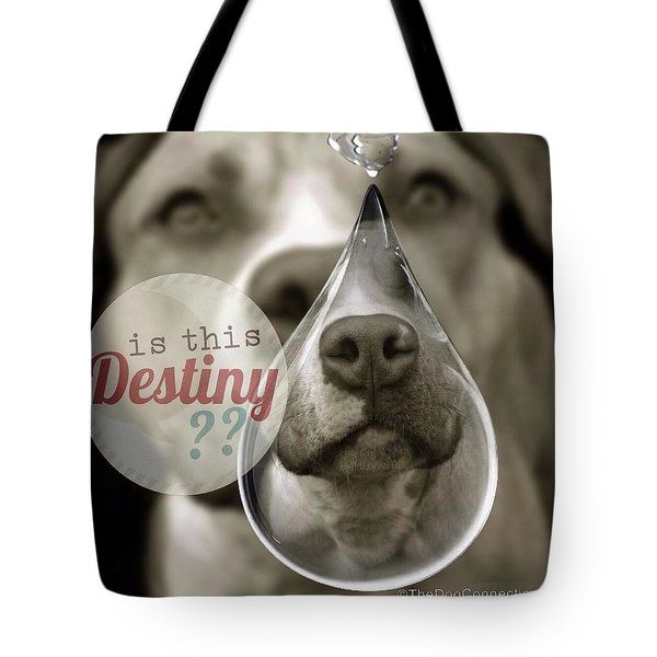 Tote Bag featuring the digital art Is This Destiny by Kathy Tarochione