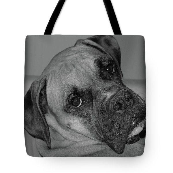 Is This Necessary Tote Bag by DigiArt Diaries by Vicky B Fuller