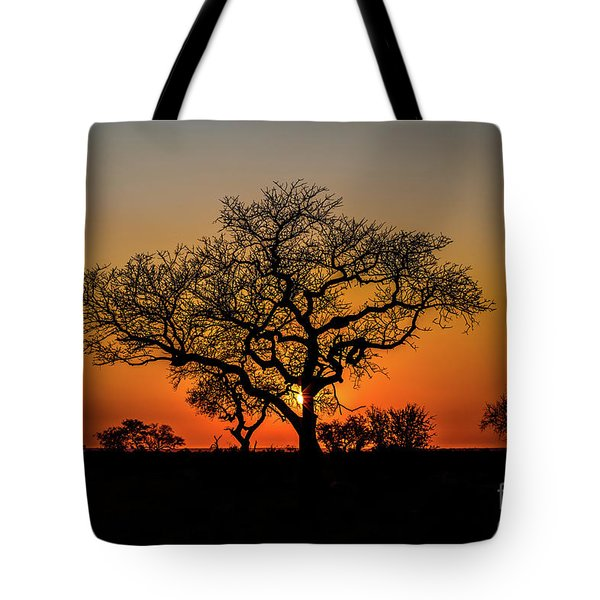 Tote Bag featuring the photograph Isimangaliso Wetland Park by Benny Marty