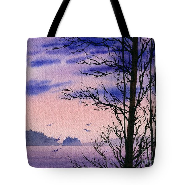 Tote Bag featuring the painting Island Point by James Williamson