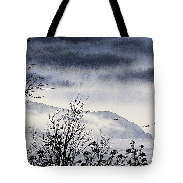 Tote Bag featuring the painting Island Solitude by James Williamson