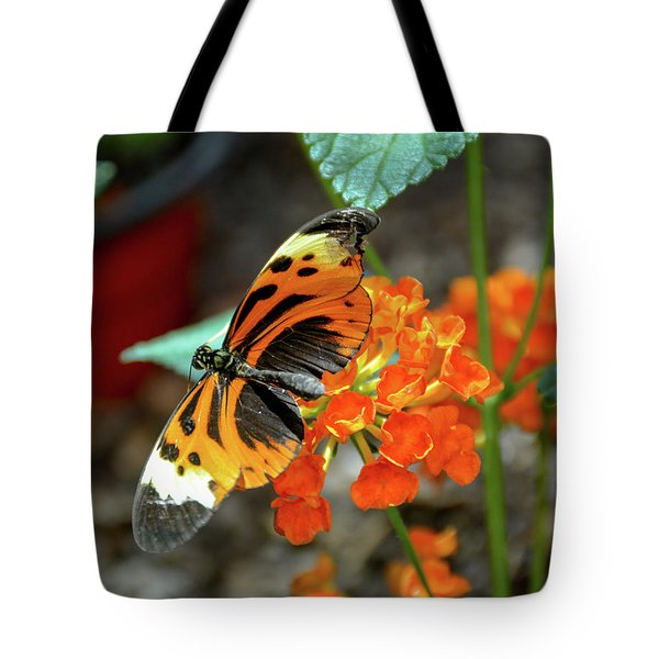 Ismenius Tiger Butterfly Tote Bag