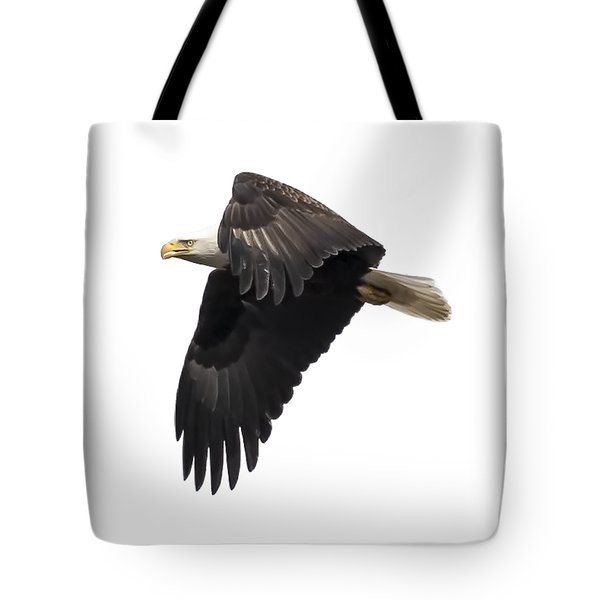 Isolated American Bald Eagle 2016-6 Tote Bag