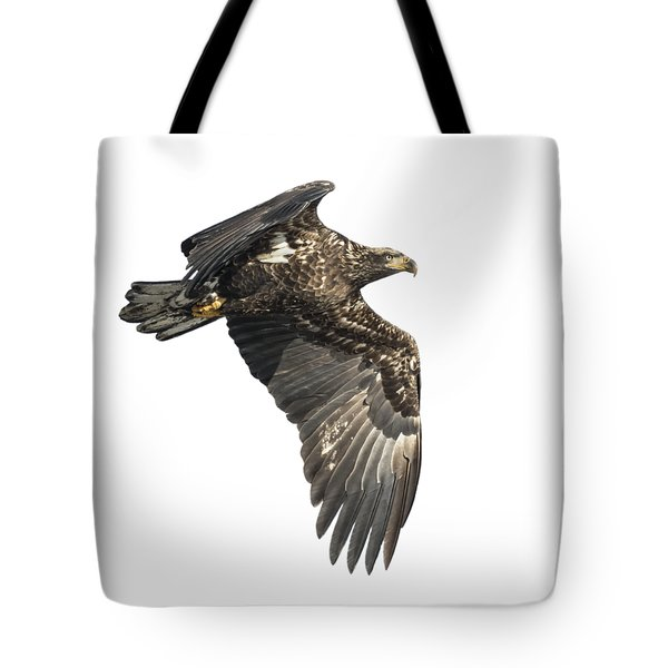 Tote Bag featuring the photograph Isolated Eagle 2017-2 by Thomas Young