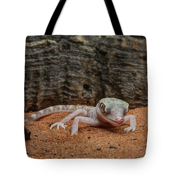 Tote Bag featuring the photograph Israeli Sand Gecko - 1 by Nikolyn McDonald