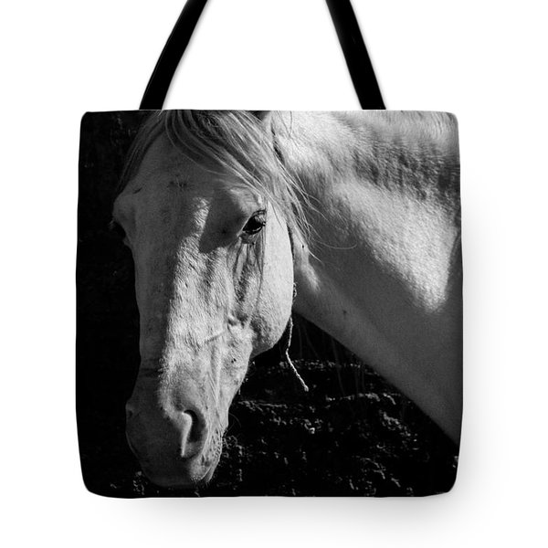 Tote Bag featuring the photograph It All Seems Like A Dream Now by Jez C Self
