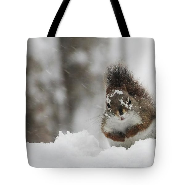 It Is Cold Out Here Tote Bag
