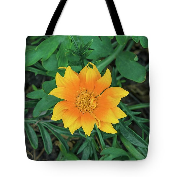 It Is Love, Not Reason, That Is Stronger Than Death.  Tote Bag
