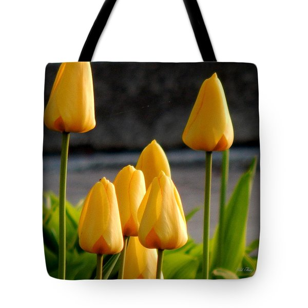 It Is Spring Tote Bag