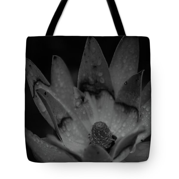 Tote Bag featuring the photograph It Rained by Lora Lee Chapman