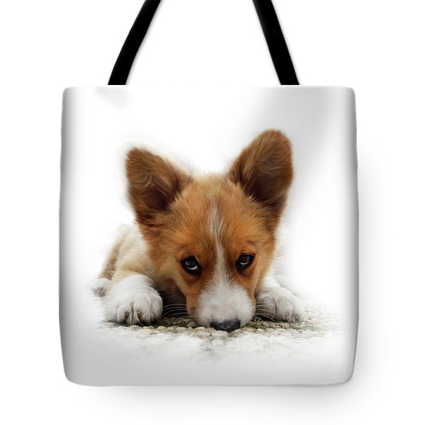 It Wasn't Me Corgi Tote Bag