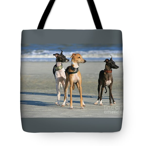 Italian Greyhounds On The Beach Tote Bag