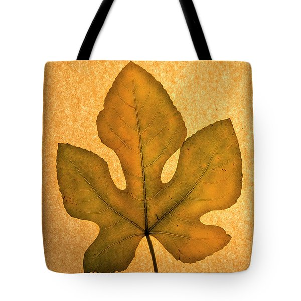Tote Bag featuring the photograph Italian Honey Fig Leaf 4 by Frank Wilson