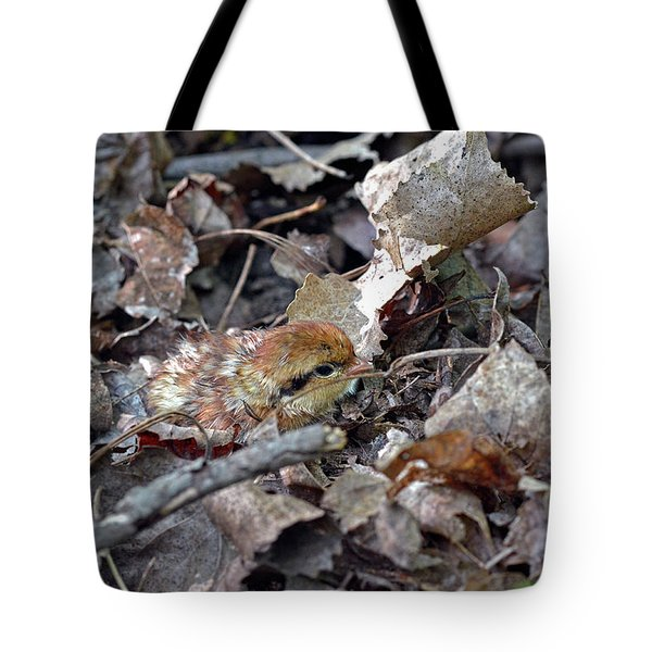 It's A Baby Grouse Tote Bag
