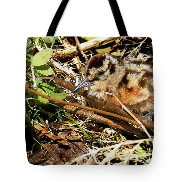 It's A Baby Woodcock Tote Bag