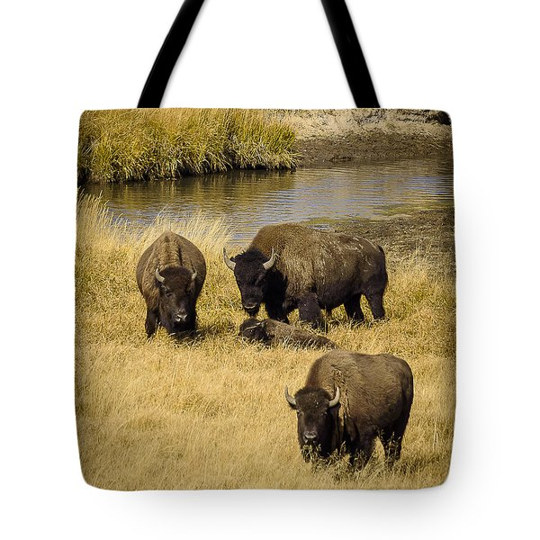 It's A Family Affair Tote Bag by Sandy Molinaro