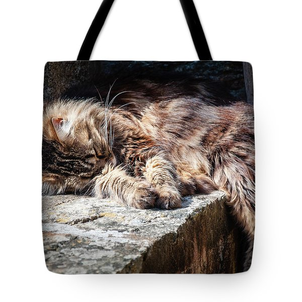 It's A Hard Life Tote Bag
