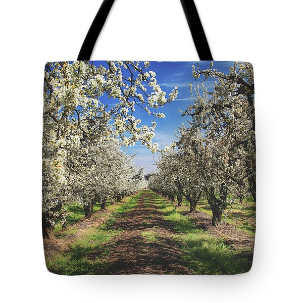 Tote Bag featuring the photograph It's A New Day by Laurie Search