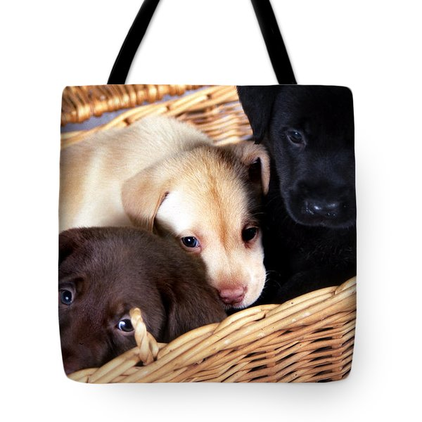 It's A Picnic Tote Bag by Skip Willits