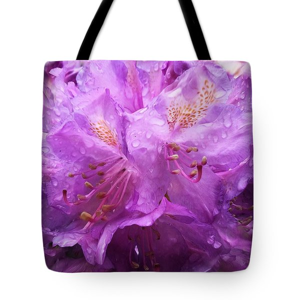 It's A Rainy Day Tote Bag