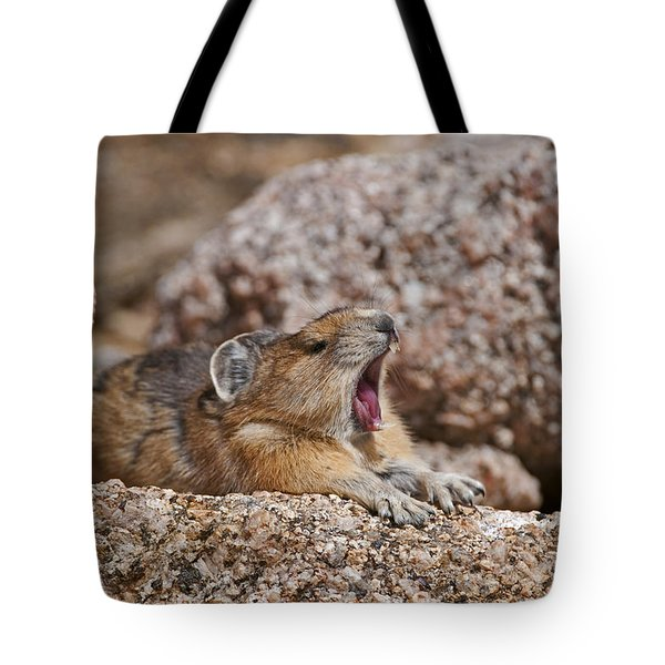 Tote Bag featuring the photograph It's Been A Long Day by Gary Lengyel