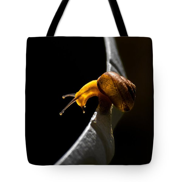 It's Dark Down There Tote Bag