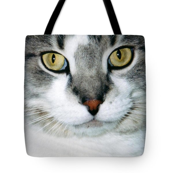 It's In The Cat Eyes Tote Bag