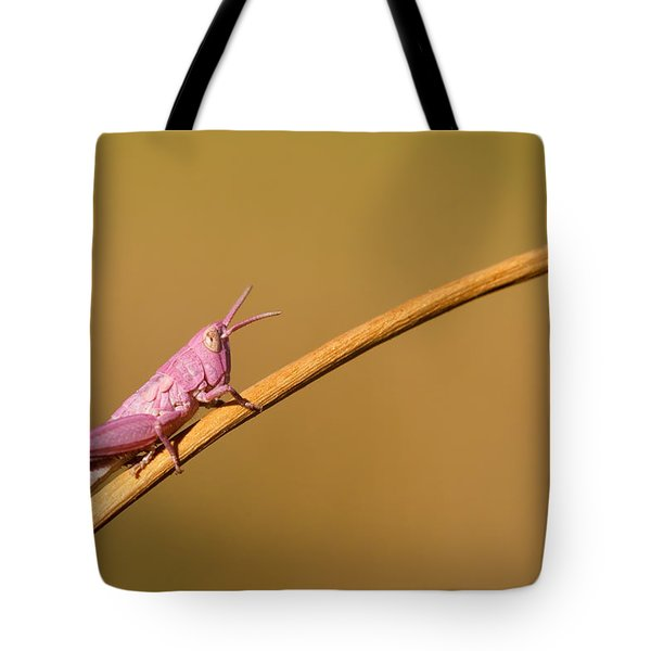 It's Not Easy Being Pink Tote Bag