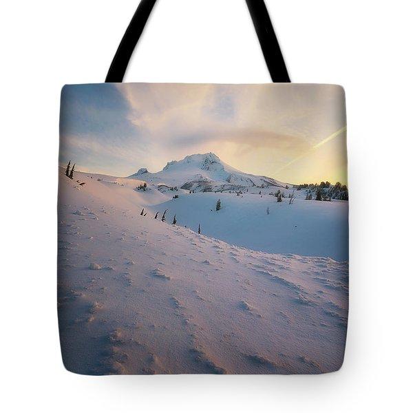 It's Not Spring Yet Tote Bag by Ryan Manuel
