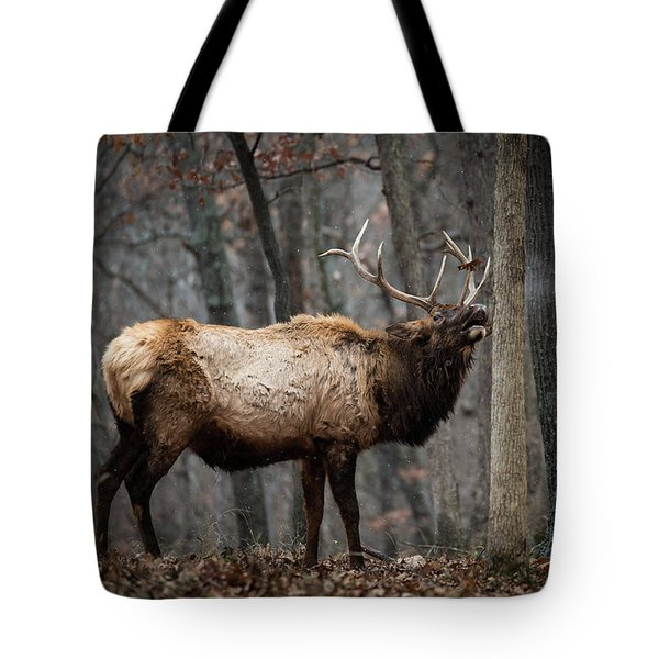 It's Snowing Tote Bag by Andrea Silies