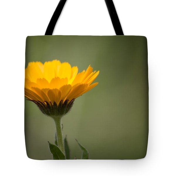 It's Spring Tote Bag