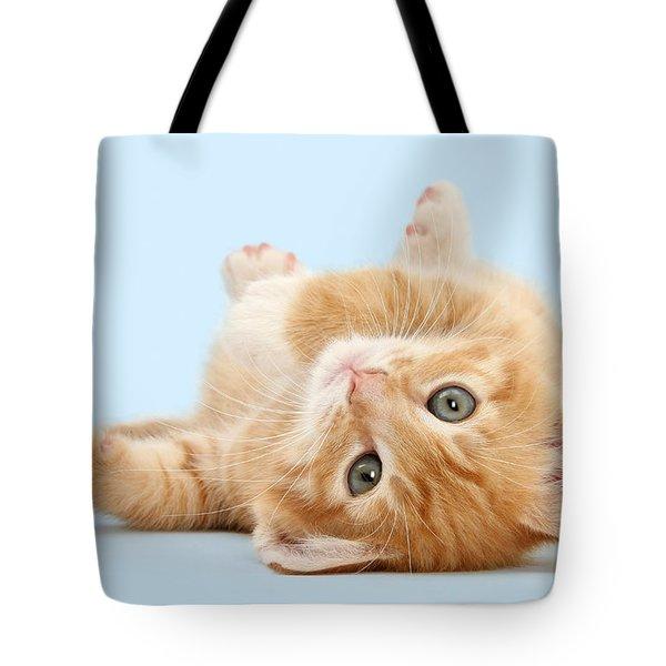 It's Sunday, I'm Feeling Lazy Tote Bag