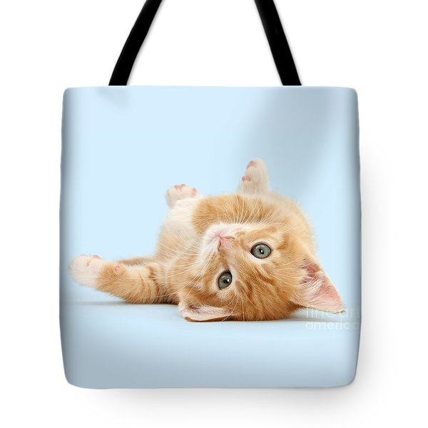 It's Sunday, I'm Feeling Lazy Tote Bag