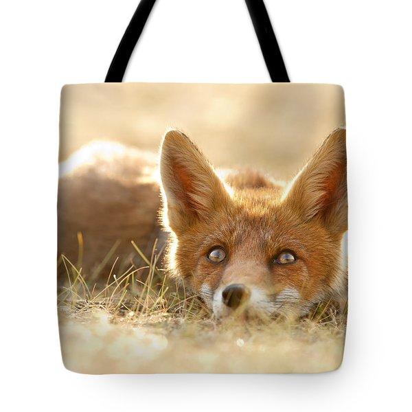 06a87095f4cf Little Fox Dreaming Of A Foxy Future Tote Bag