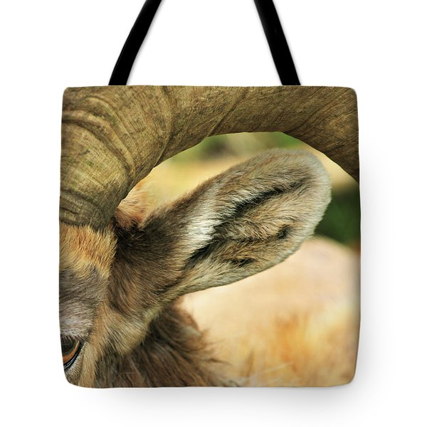 I've Got An Eye On You Tote Bag
