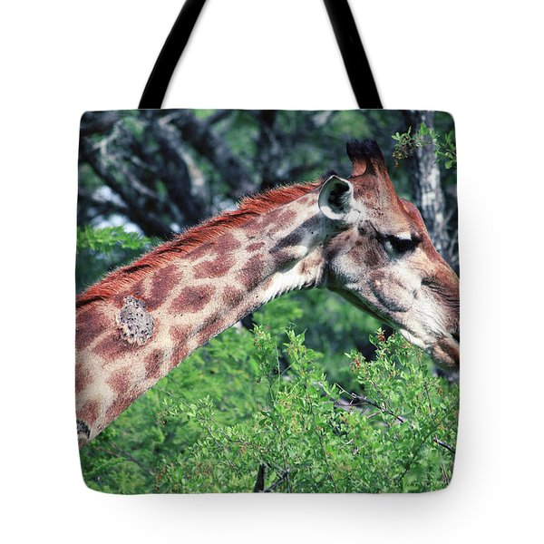 I've Got Stories To Tell Tote Bag