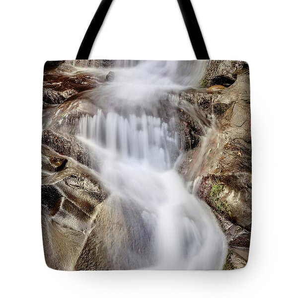 Tote Bag featuring the photograph Ivory And Bronze  by Az Jackson