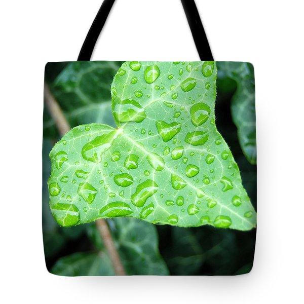 Ivy Leaf Tote Bag by Michael Peychich
