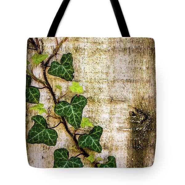 Ivy On The Fence Post Tote Bag