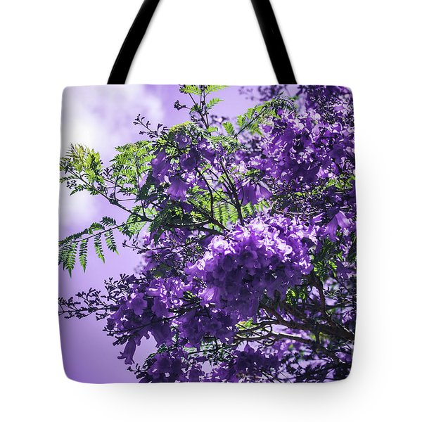 Tote Bag featuring the photograph Jacaranda Mimosifolia Kula Maui Hawaii by Sharon Mau