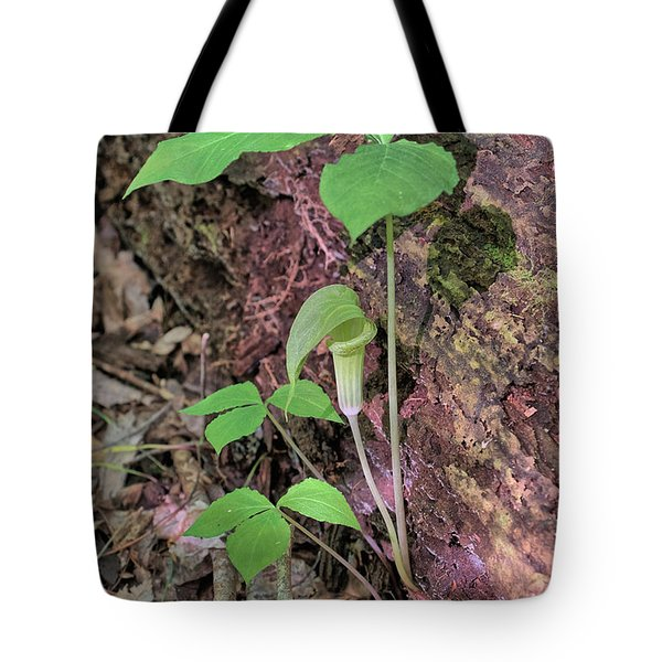 Tote Bag featuring the photograph Jack-in-the-pulpit by Richard Goldman