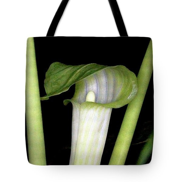 Jack In The Pulpit Tote Bag by Meta Gatschenberger