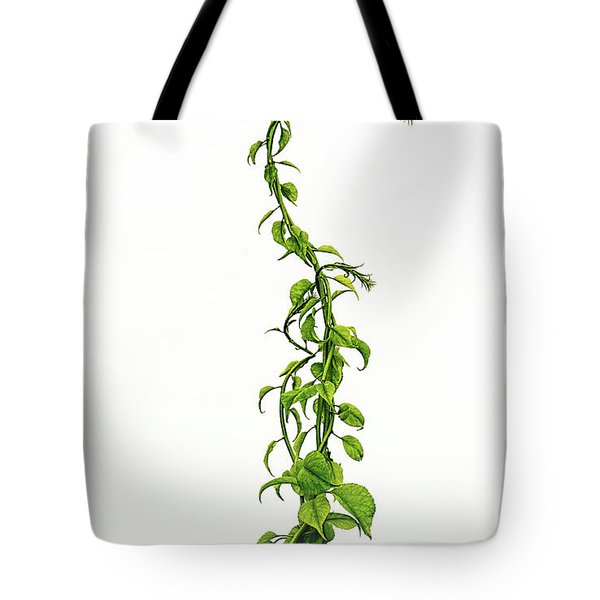 Jack's Ladder Tote Bag