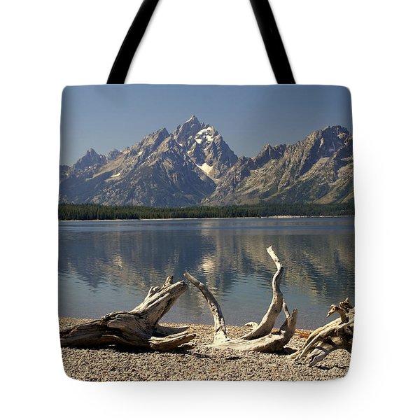 Jackson Lake 1 Tote Bag by Marty Koch