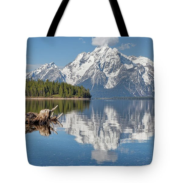 Tote Bag featuring the photograph Jackson Lake, Gtnp by Joe Paul